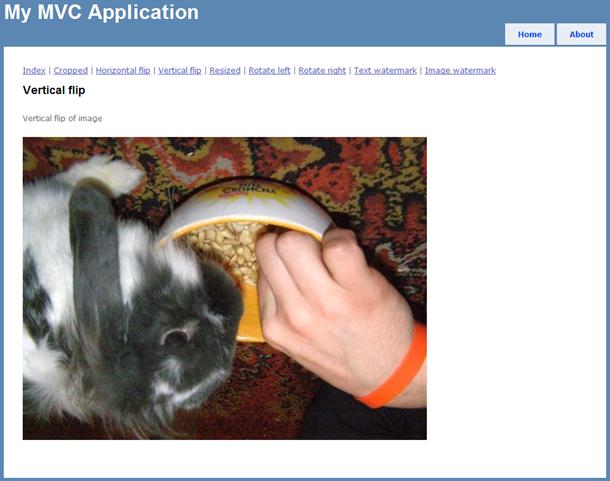 Flipped bunny