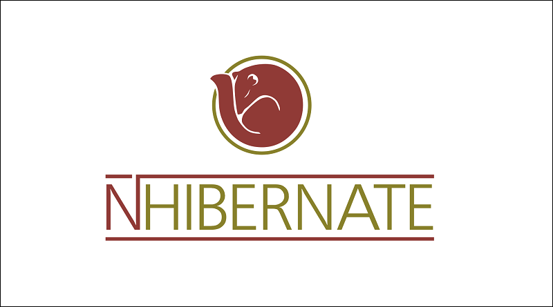 NHibernate on ASP NET Core